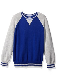 Gymboree Little Boys' Blocked Raglan Sweater  XS