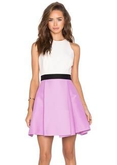 Halston Heritage Colorblock Dress