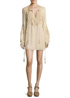 Haute Hippie Penny Embroidered Silk Mini Dress