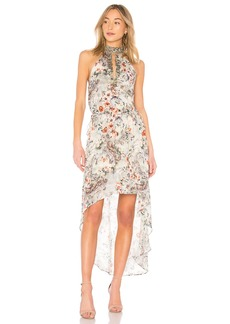 Haute Hippie Wished Upon Dress
