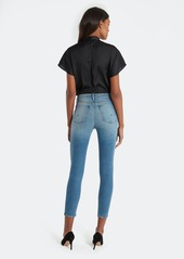 Hudson Jeans Holly High Rise Skinny Ankle Jeans