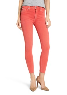 Hudson Jeans Tally Crop Skinny Jeans (Worn Explosive)