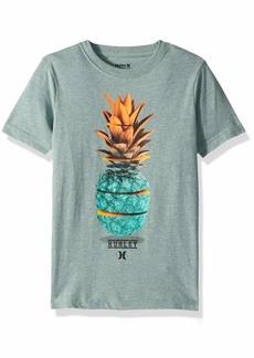 Hurley Big Boys' Graphic T-Shirt  S