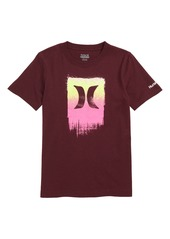 Hurley Sprayed Logo Graphic T-Shirt (Big Boys)