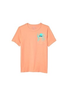 J.Crew Short Sleeve Critter Pocket Tee (Toddler/Little Kids/Big Kids)