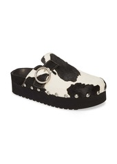 Jeffrey Campbell Osha Genuine Calf Hair Clog (Women)