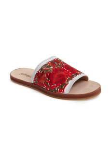Jeffrey Campbell Sarasi Flower Embroidered Slide Sandal (Women)