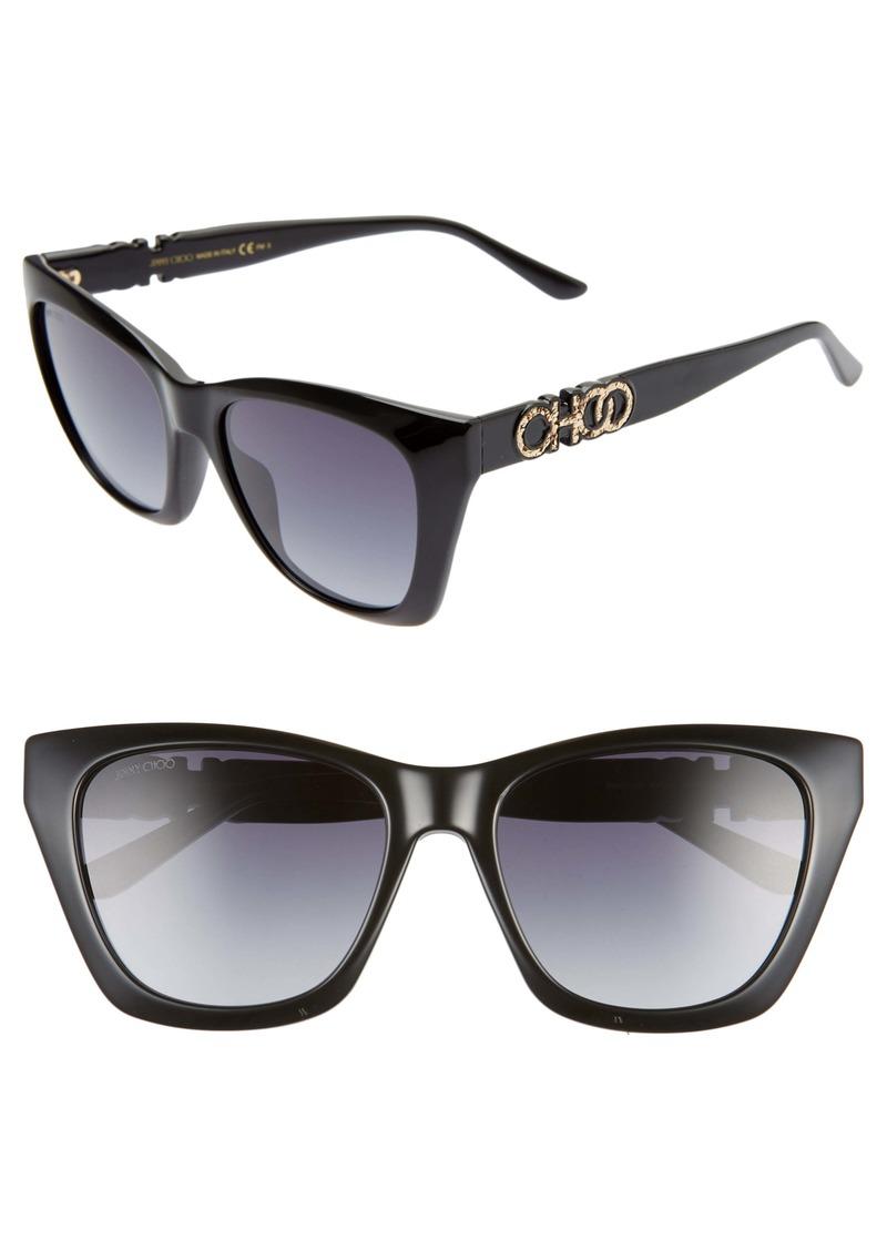 JImmy Choo Rikki 55mm Cat Eye Sunglasses