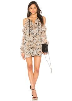 Amorita Dress