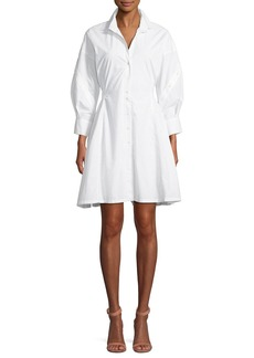 Joie Darcila Cotton Button-Up Shirtdress