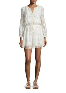 Joie Bittern Embroidered-Lace Dress