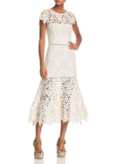 Joie Celedonia Lace Illusion Dress