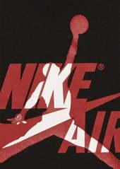 Jordan Air Jordan Graphic T-Shirt (Toddler Boys)