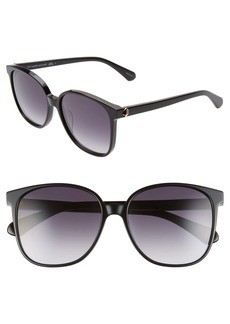 kate spade new york alianna 56mm rounded cat eye sunglasses