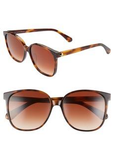 kate spade new york alianna 56mm rounded cat eye sunglasses