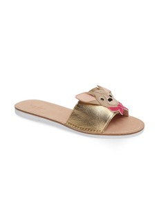 kate spade new york isadore chihuahua slide sandal (Women)