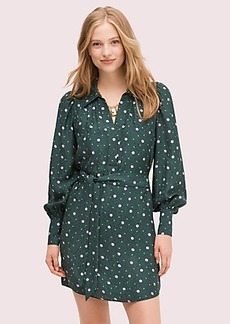 Kate Spade pop dots shirtdress