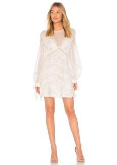 Frameless Mini Dress