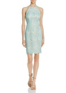 Keepsake True Love Lace Dress - 100% Exclusive