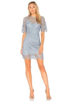 Reach Out Mini Dress
