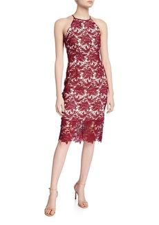 Keepsake True Love Lace Halter Sheath Dress
