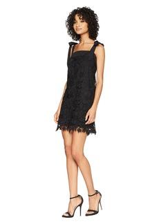 Kensie Bold Garden Lace Dress KS5K8220