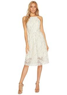 Kensie Borderline Lace Dress KS9K9672