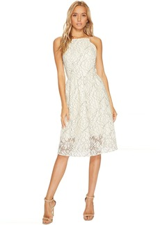 kensie Borderline Lace Dress KS9K9672