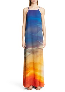 Lafayette 148 New York Leonissa Print Maxi Dress