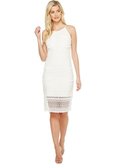 Laundry by Shelli Segal Fringe Venise Dress with Lace Inserts