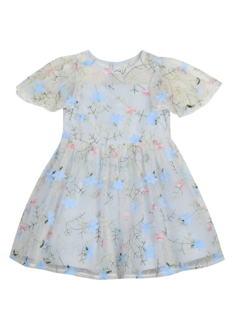 Laura Ashley Little Girl's Embroidered Mesh Dress
