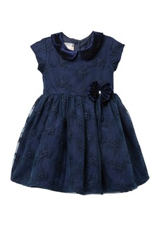 Laura Ashley Peter Pan Collar Embroidered Dress (Toddler & Little Girls)