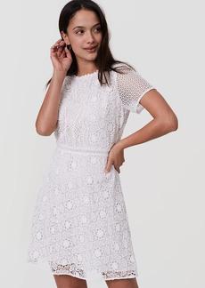 Camellia Lace Dress