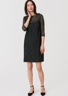 LOFT Diamond Lace Shift Dress