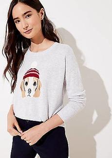 LOFT Dog Sweater