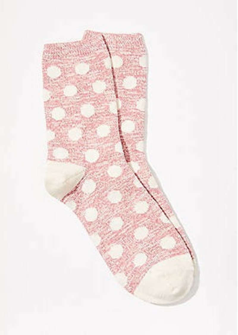 LOFT Dotted Crew Socks