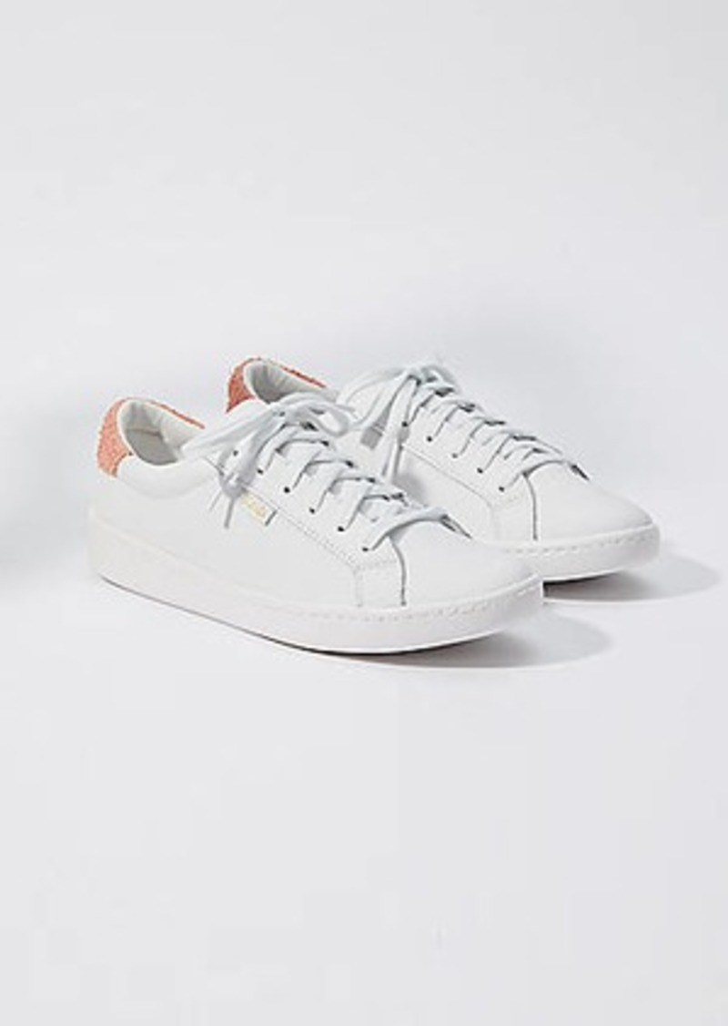 LOFT Keds Ace Leather Sneakers