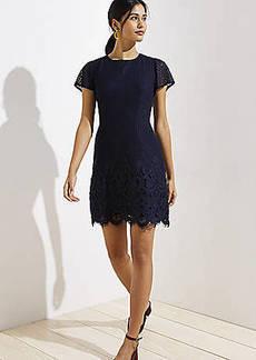 LOFT Lace Sheath Dress