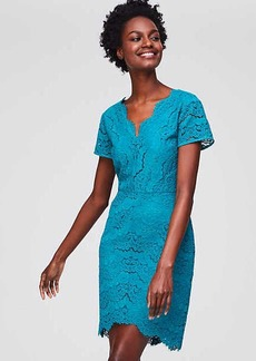Lace V-Neck Sheath Dress