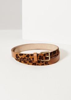 LOFT Leopard Print Haircalf Leather Belt