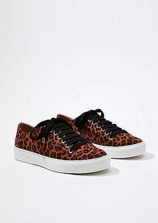 LOFT Leopard Print Lace Up Sneakers