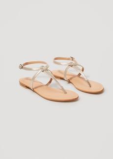 Metallic Thong Gladiator Sandals