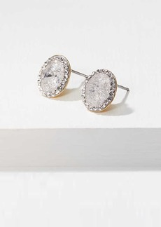 LOFT Pave Stone Oval Stud Earrings