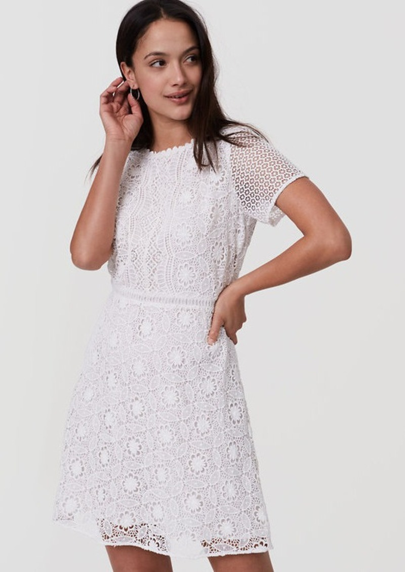 LOFT Petite Camellia Lace Dress