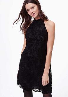LOFT Petite Velvet Lace Halter Dress