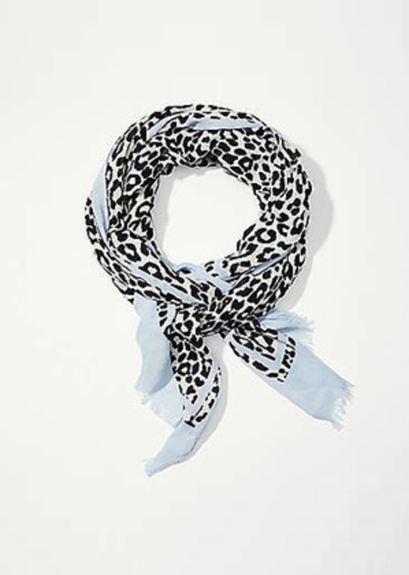 LOFT Spotted Scarf