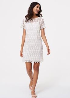 Tall Chevron Lace Shift Dress