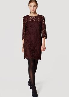 Tall Lace Shift Dress