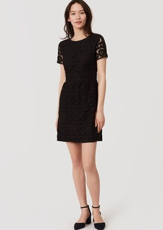 Tall Short Sleeve Lace Dress
