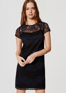 Tall Striped Lace Dress